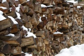 Rochers De Naye / Logs